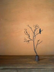 Little tree[Old crow]